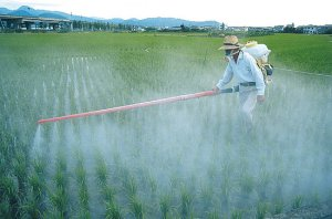 pesticides-food-1